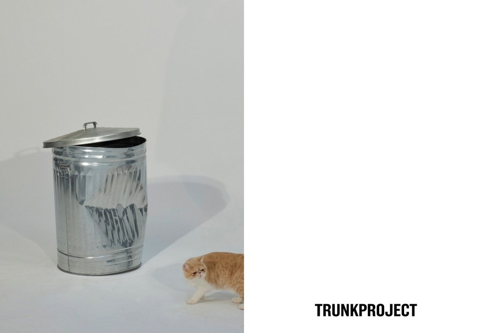 TRUNK PROJECT